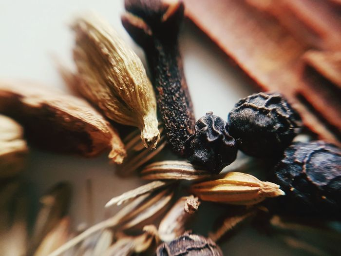 Close-up of dried pine cone on table