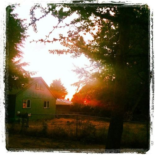 Salem Sunrise Pretty UpTooEarly Sunrise Smalltowngirl art ArthritisIsntAllBad