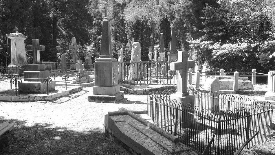Korfu Corfu Friedhof Cemetery Britischer Friedhof British Cemetery Blackandwhite Schwarzweiß Gräber Grabsteine Tombstone