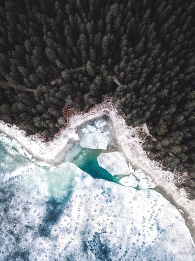 Beauty In Nature Nature Water Day No People Outdoors Scenics Mountain Winter Tree Cold Temperature Eibsee Drohne Dronephotography Drone  DJI Mavic Pro Mavic Pro Bayern