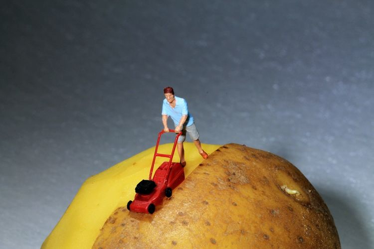 Close-up of figurine with toy on potato