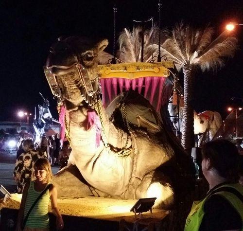 Obří Loutky Giant Pupets Night Photo Mobile Photo Pilsen