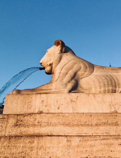 Piazza del popolo- roma italy