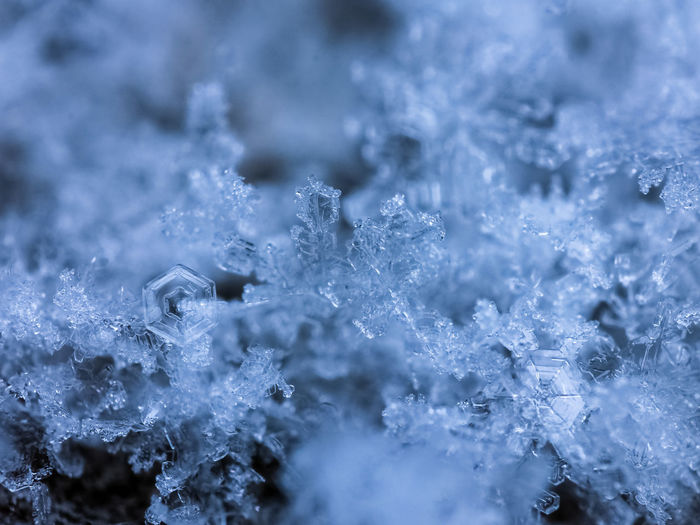 Close-Up Of Snowflakes