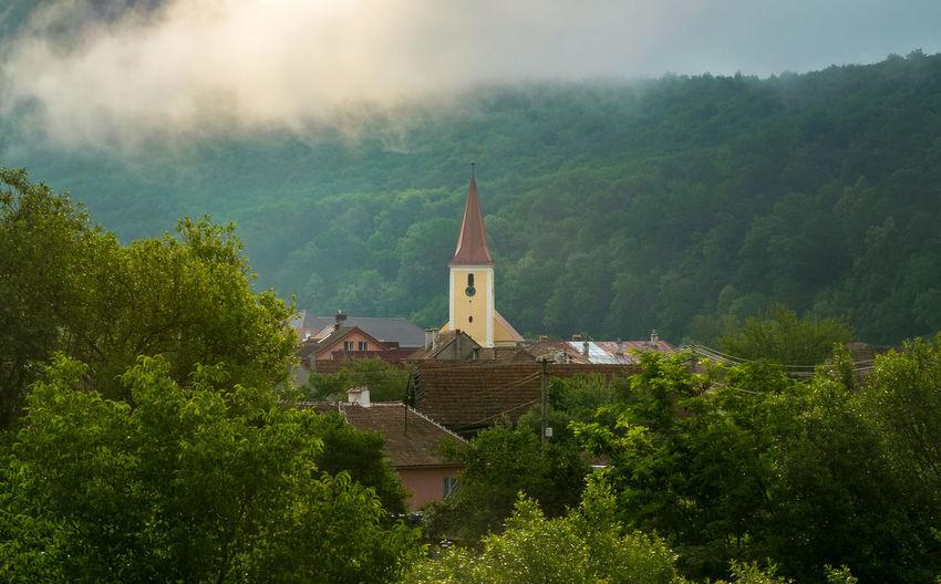 Church amidst trees and buildings against sky