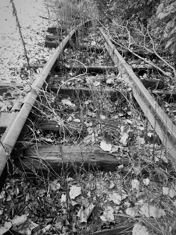 Abandoned Railroad Tracks Railroad Love Railroadphotography Black And White Collection  Black And White Photography Black & White Shades Of Grey