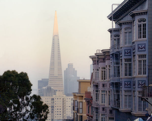 View of the Transamerica building down a San Francisco Street. Architecture Building Building Exterior City City Life Famous Place Modern Residential District San Francisco Skyscraper Street View Tall - High Transamerica Building Victorian Architecture