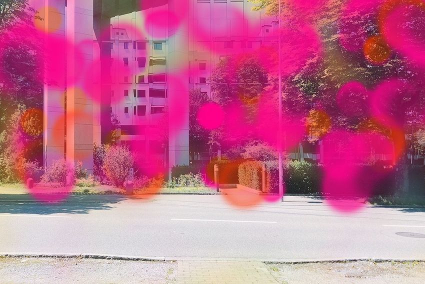 Art Photography Artphotography Artist ArtWork Pink Color Architecture City Multi Colored Street Day Built Structure Building Exterior No People Plant Nature Outdoors Flower Flowering Plant Freshness Road Beauty In Nature Transportation Tree Sunlight The Creative - 2018 EyeEm Awards