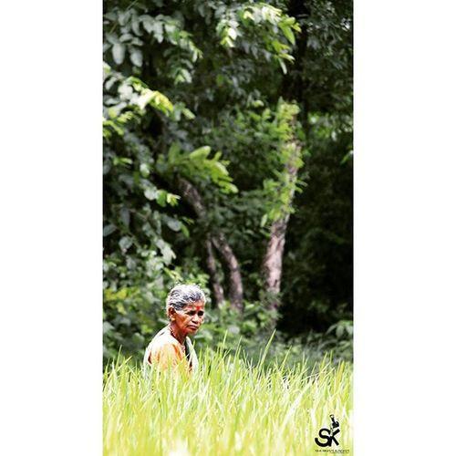 Village Farm Farming Oldwomen Red Bindi !