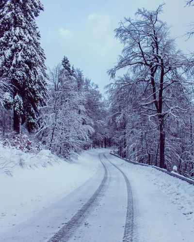 Streets of Winter | Oliver Hlavaty Photographie • © 2015-18 Oliverhlavaty Oliverhlavatyphotographie Rennsteig Tabarz Brotterrode Thüringerwald Thuringia Thuringen Inselsberg Snow Winter Cold Temperature The Way Forward Road Nature Transportation Tree No People Bare Tree Landscape Outdoors Beauty In Nature