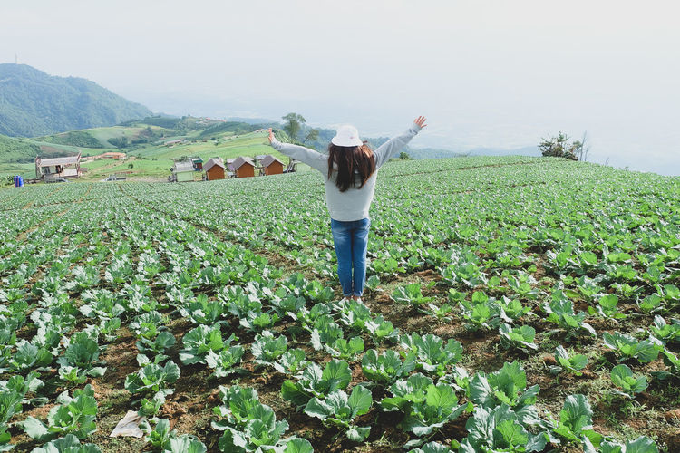 One Person Land Human Arm Field Landscape Real People Plant Growth Agriculture Environment Beauty In Nature Green Color Nature Sky Scenics - Nature Standing Farm Rural Scene Casual Clothing Limb Arms Raised Arms Outstretched Outdoors Plantation Farmer
