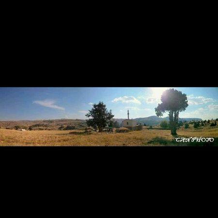 Anıt Agac Earth Yayla muazzam bir yer