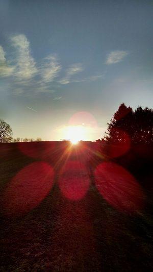 Sunrise at 7:19Looking Into The Future Sunrise Nature
