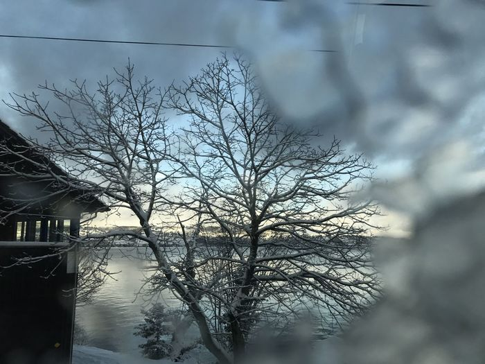 Ice Crystals Lake Look Out The Train Train - Vehicle Tranquility Tree Window