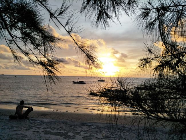 Sunset Sea Horizon Over Sea Adventure Yellow Color Water Boat Cano Lake Over The Objects And Subjects Horizon Leaf 🍂 Pine Trees Long Beach Island Bengkulu Indonesia Tree Lifestyles Real People Silhouette Beauty In Nature Horizon Over Water Tranquil Scene Beach Scenics Sky Vacations Tranquility Leisure Activity Outdoors One Person People Day