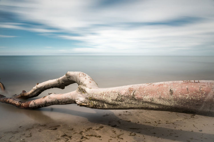 Beach Calm Cloud Cloud - Sky Cloudy Coastline Darß Day Driftwood Feel The Journey Horizon Over Water Long Exposure Nature No People Outdoors Sea Shadows & Lights Shore Sky Summer Time Goes By Tranquility Water Weststrand