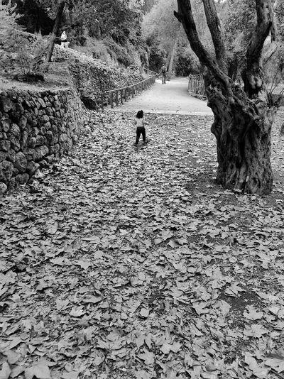 Full length of man walking on rocks