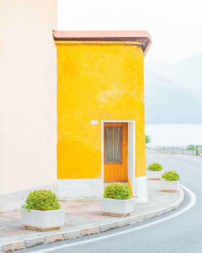 Leftover Lemons Built Structure Architecture No People Yellow Building Exterior Day Nature Plant Potted Plant Outdoors Building Wall - Building Feature Window House Orange Color Healthy Eating Close-up Entrance Citrus Fruit Sunlight