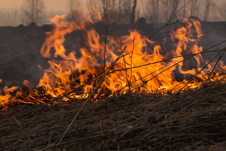View of bonfire on field