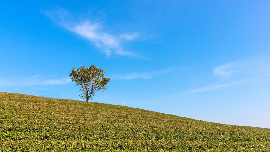 Scenic view of land against blue sky