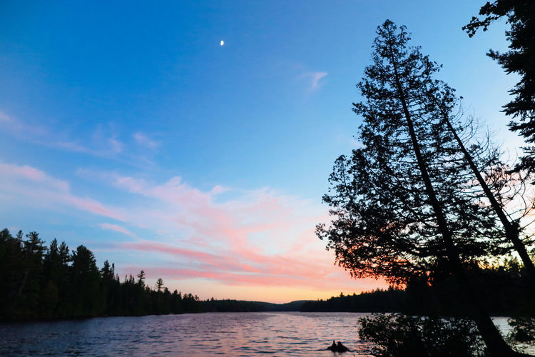 Algonquin Park Algonquinpark Algonquinprovincialpark Beauty In Nature Day Growth Lake Moon Nature No People Outdoors Scenics Silhouette Sky Sunset Tranquil Scene Tranquility Tree Water