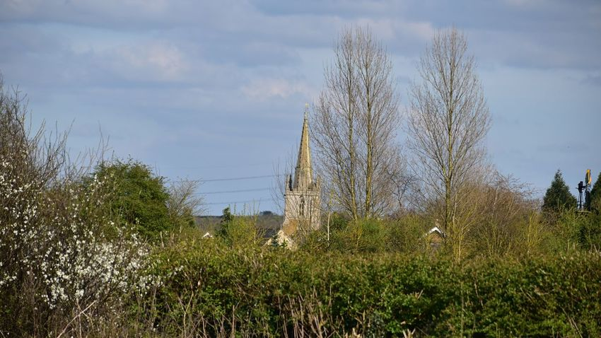 Taking Photos Harlaxton Hedgeline Trees Steeple Nikon D5500
