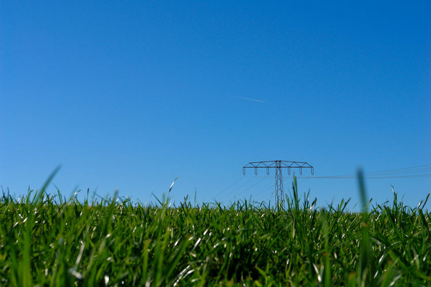 Agriculture Beauty In Nature Blue Clear Sky Concept Copy Space Ecology Electricity  Electricity Tower Energy Environment Environment Protection Field Grass Growth High Voltage Cable Low Angle View Meadow Nature Outdoors Power Supply Rural Scene Sky Symbolic  Text Space