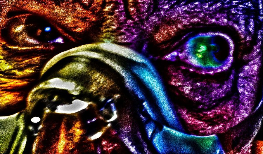 Fine art isin the eye of the beholder Save A Life Adopt Journey Of Life For The Love Of Photography Enjoying Life Special Effects Horror On The Back Burner Over Done Selfie ♥ Fun Times Of Self Fine Art Life Is A Journey Fine Art Photography
