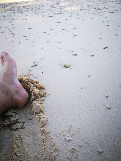 Foot And Sand Fine Sand Relaxing Moments Shore Sand And Pebbles On The Beach Beach Sand Low Section barefoot Human Leg Human Foot One Person Human Body Part Water Shore Nature Day