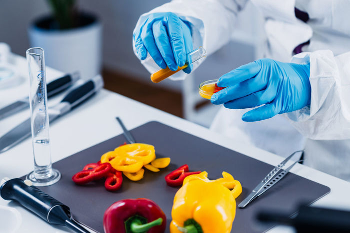 Food Safety Inspector Working With Vegetables In Laboratory Checking Cutting Food Quality Laboratory Analysis Quality Red Additives Analysis Analyzing Bell Peppers Biotechnology Food Hazard Health Inspecting Inspector Laboratory Organic Peppers Pesticides Quality Control Technician Test Testing Yellow
