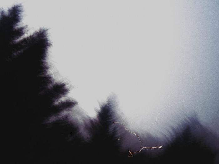 Storm Long