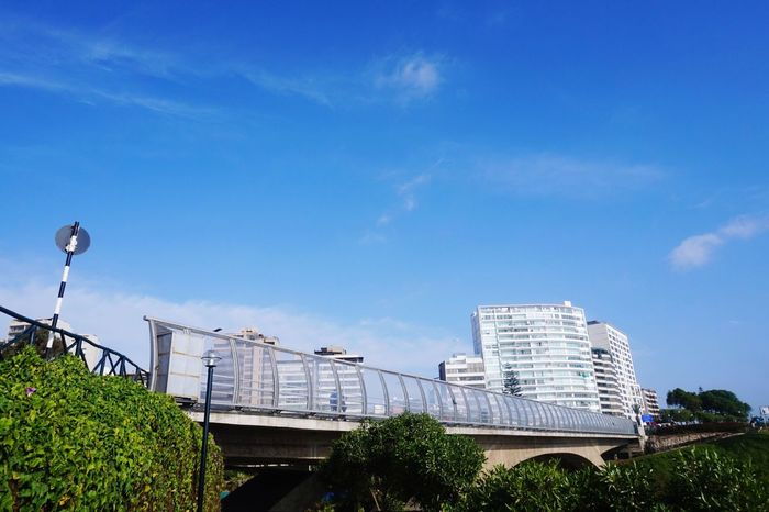 Architecture Sky Low Angle View Built Structure Blue Building Exterior Outdoors Day Cloud - Sky No People Tree City Nature EyeEmNewHere