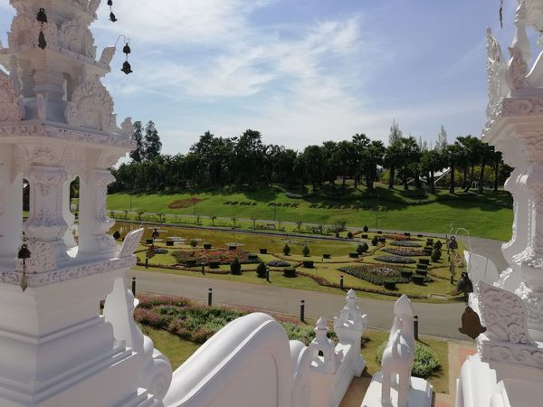 #Chiang Mai Thailand Plant Plants Plant Life Plants And Flowers Chiang Mai | Thailand Buildings No Filter, No Edit, Just Photography Temple Stairs Sky Sky And Clouds Park EyeEmNewHere