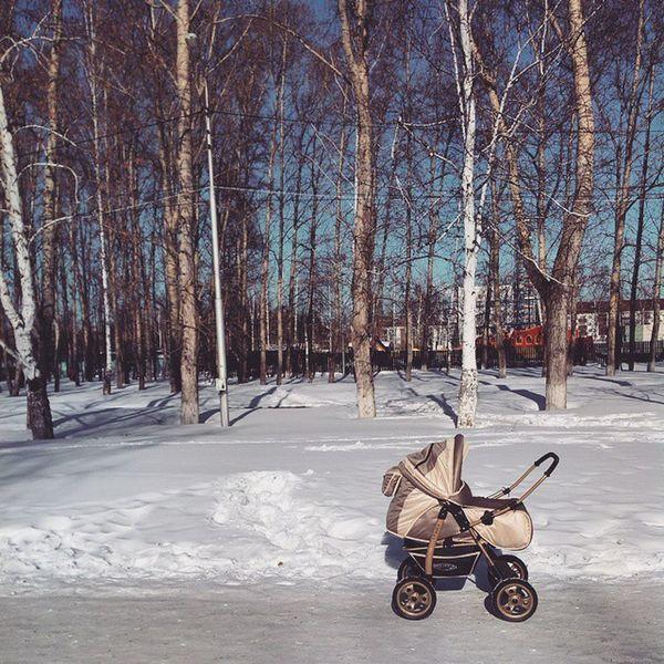 мороз и солнце день чудесный для прогулки с сыном прогулка снег весна парк сын  Миша Frost and Sun Beautiful Day Stroll Spring Park Snow Schnee Sonny Michael Miguel