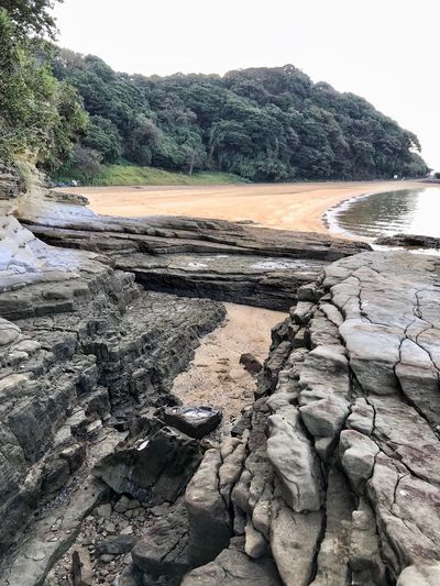 Down By The Sea Early Autumn Morning Nature Rock - Object Outdoors Beach Day Tranquility Landscape No People Sand Water Travel Destinations Beauty In Nature Tree Scenics Sky Imari Japan
