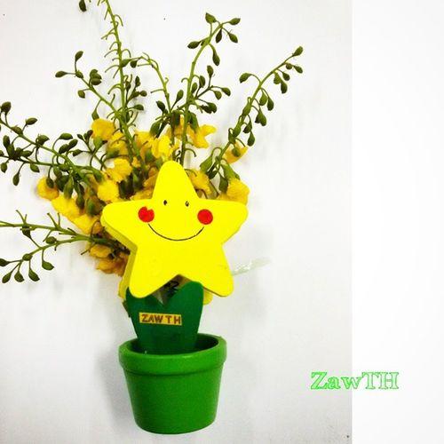 ပိေတာက္ Padauk . The National Flower of Myanmar. Our Burmese New Year is Coming!!! Padauk Padaukflower Thingyan  Mandalay Myanmar Myanmarnewyear Burma Burmesenewyear Igersmyanmar Igersmandalay Burmeseigers Exploremyanmar Goldenland 9flower9 Superb_flower Loves_flowers_ Ip_blossoms Ic_natura Ic_wow Nature Mycapture Loves_bestpics Hot_shotz Yellow Igflower bsn_flower bsn_family galaxygrand2 zawth