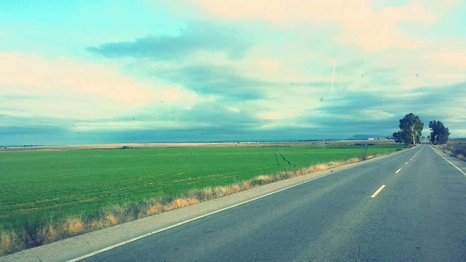A road ;)