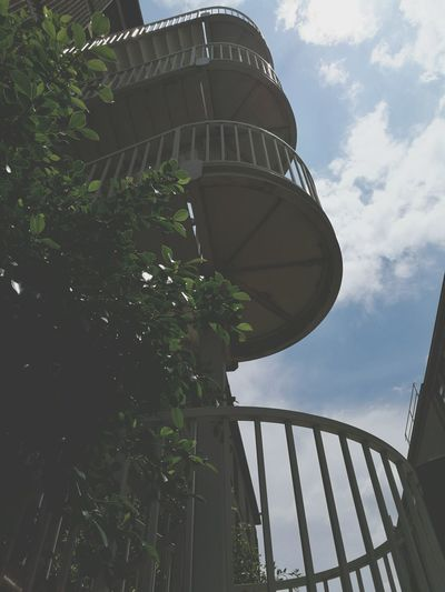 Low Angle View Tree Sky Outdoors Architecture Day Built Structure No PeopleStudent Life Nature Natural Nature And Modern Mix Leaves Theme Style Hipster Retro Water Conservation Staircase Green Growing No People Contemporary Modern