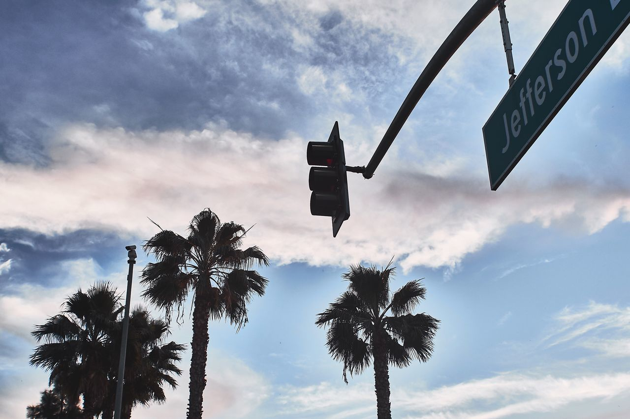 low angle view, sky, palm tree, cloud - sky, communication, outdoors, day, tree, no people, road sign, nature
