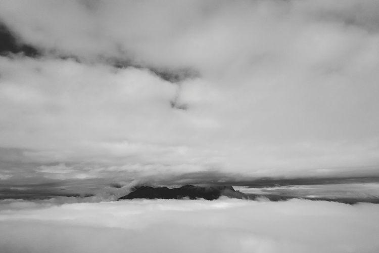 牛背山 Landscape