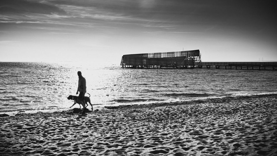 Dog walk along Kastrup seaside. 35mm Beach Beauty In Nature Black And White Blackandwhite Copenhagen Day Denmark Dog Dogwalk Horizon Over Water Kastrup Leisure Activity Lifestyles Men Nature One Person Outdoors Real People Sand Scenics Sea Sky Water Wave