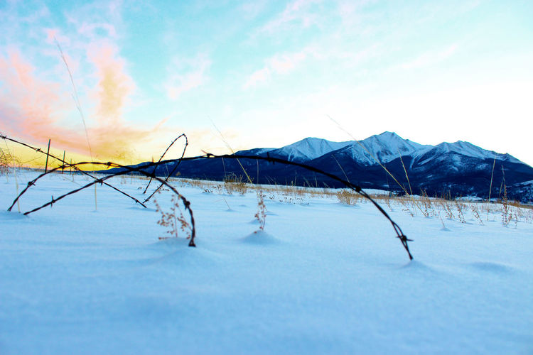 Surface level of barbed wire on snow covered field