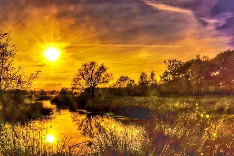 Nature is the new gold Sundown Nature