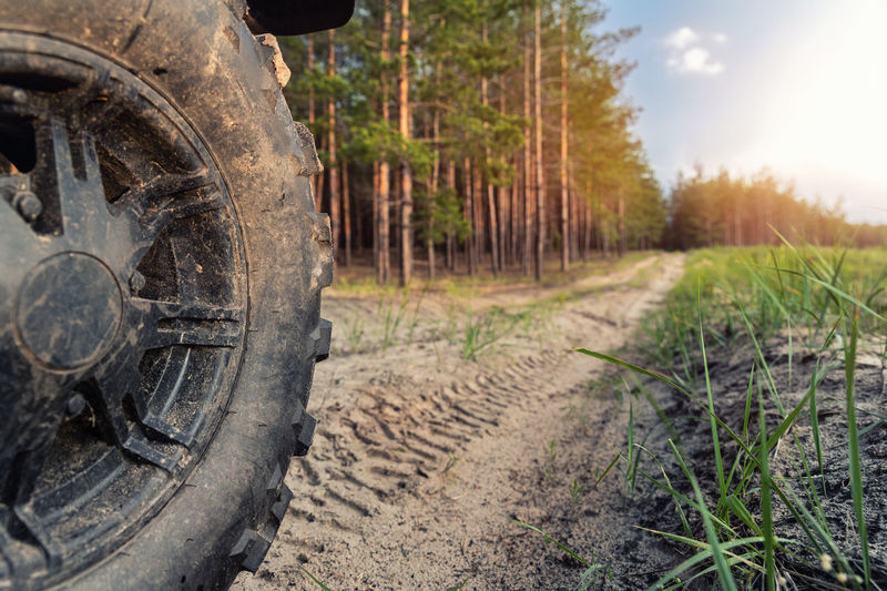 View of dirt road in field