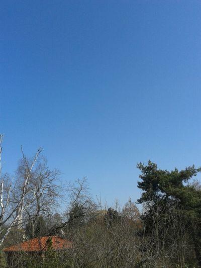 Weather Sky Blue Blue Sky Spring Sunny Good Weather