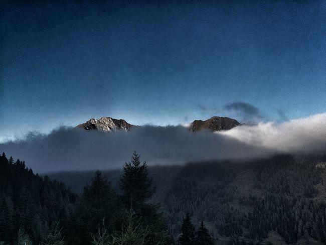 Nature Outdoors Happy Eyemphotography EyeEmNewHere Hikking Likeit Free Morning Loveit Pinzgau Austria Autumn Tree Blue Sky
