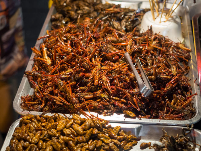 Close-Up Of Fried Crickets And Maggots For Sale In Chinatown, Bangkok, Thailand