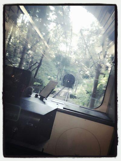 登山鉄道、ヤバイくらい素敵でローカル