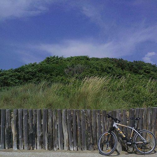 Bicycleagainsthewall Ihavethisthingwithbikes