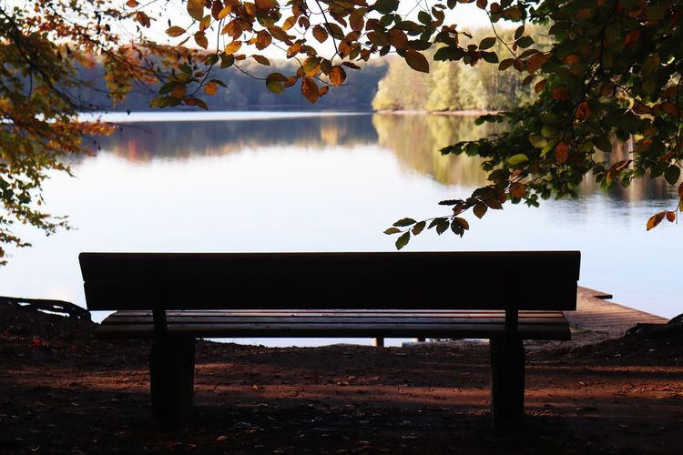 Empty bench by lake during autumn